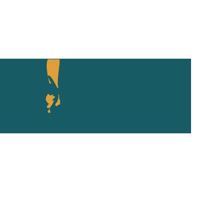 adebayoadams project logo